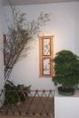 Exposición 2004