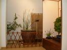 Exposición 2005