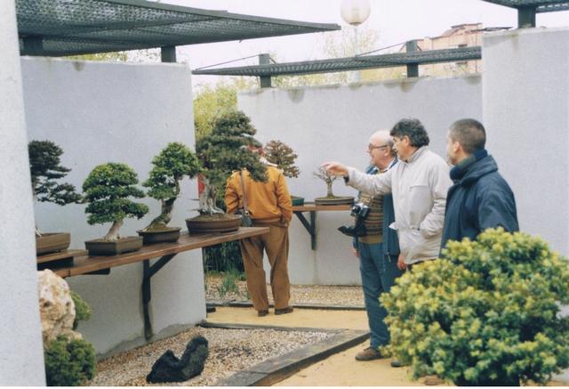 Otras actividades 2005 club bonsai alicante for Vivero alcobendas